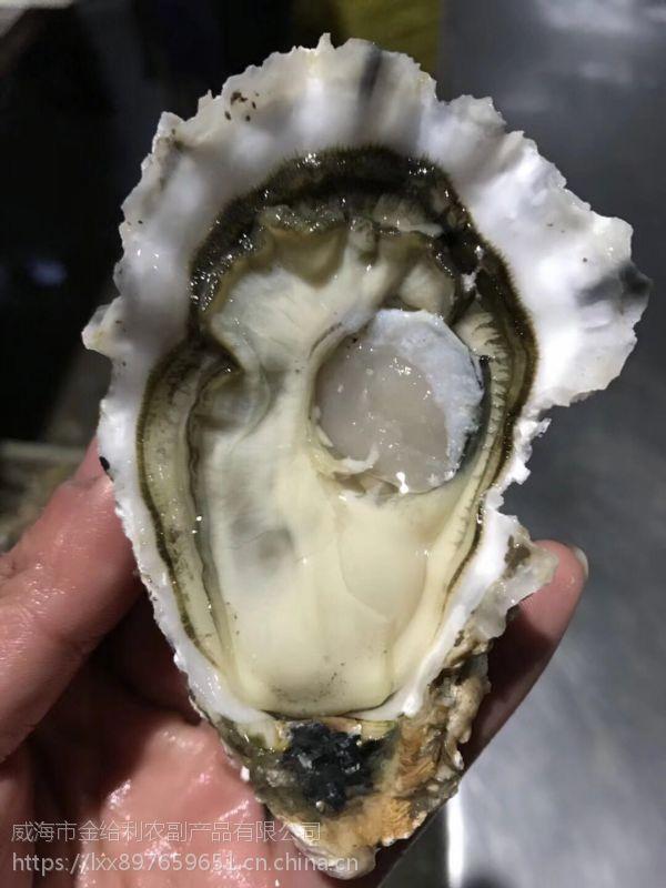 乳山牡蛎多少钱一箱 生蚝代理价格 海蛎子厂家