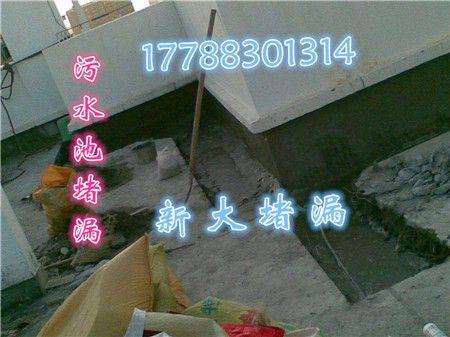 http://himg.china.cn/0/4_920_242626_450_337.jpg