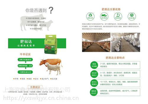 黄牛吃什么长得快 牛吃什么上膘快 牛催肥饲料添加剂 谊鑫白金肽