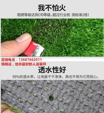 【经验谈如何正确购买】 30mm环保人造草坪仿真草坪 无毒