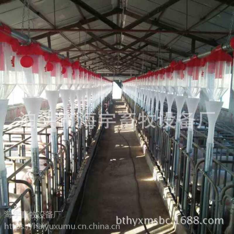 养猪喂料设备 自动化料线系统厂家销售