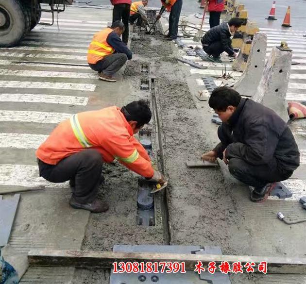 http://himg.china.cn/0/4_923_1089729_630_585.jpg
