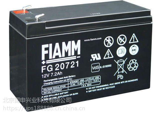 FIAMM非凡蓄电池FG21803/12V18AH
