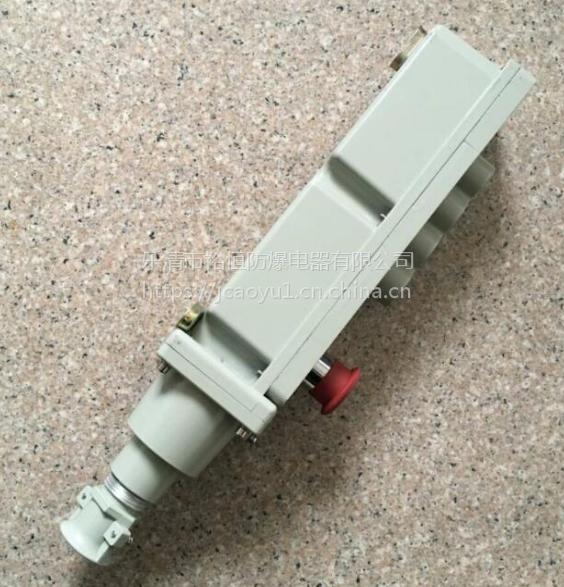 LA5817-4- 防爆电动葫芦按钮 乐清裕恒防爆