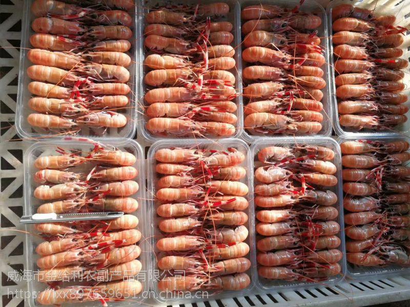 威海鳌虾价格 海龙虾厂家货源