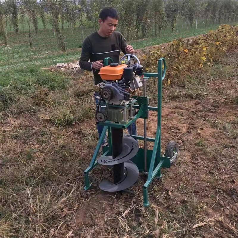 农用田地汽油挖坑机 启航牌小型便携式手提式挖洞机 大马力手提挖眼机