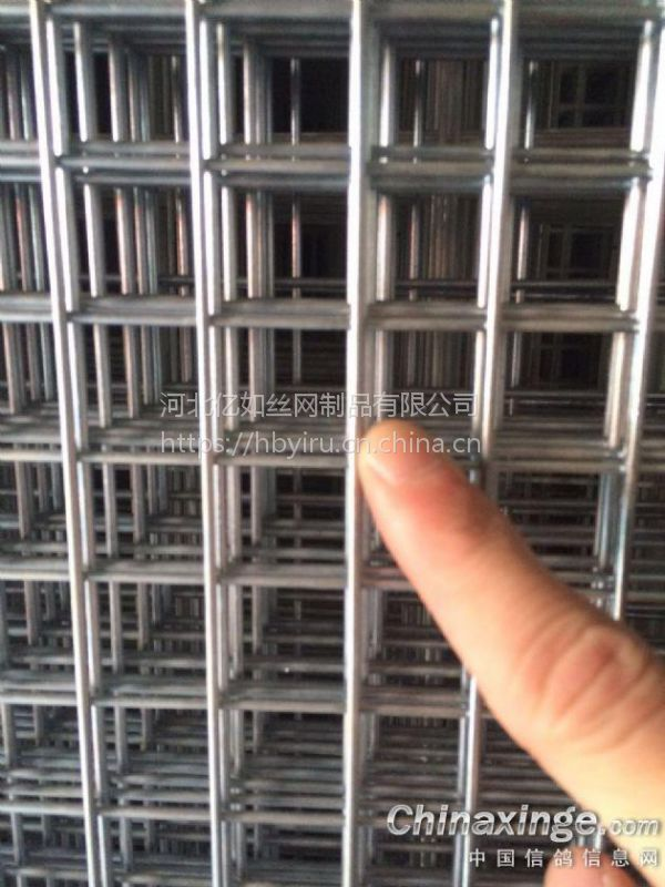 建鸽棚镀锌板地网/鸽舍围网/镀锌鸽棚铁丝网厂家