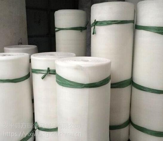 吴川养殖专用网 蔬菜大棚防虫网 蚂蚱养殖网 防护网