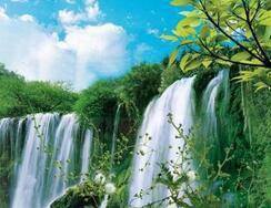 http://himg.china.cn/0/4_934_222484_244_188.jpg