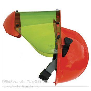 AS1000 防电弧头盔(美国 Salisbury)