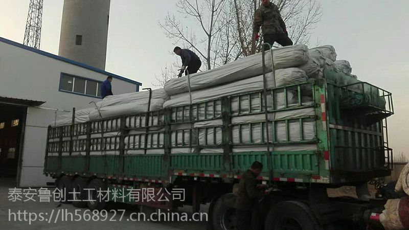 黄冈钢塑土工格栅厂家直销 国标80-80KN包检测