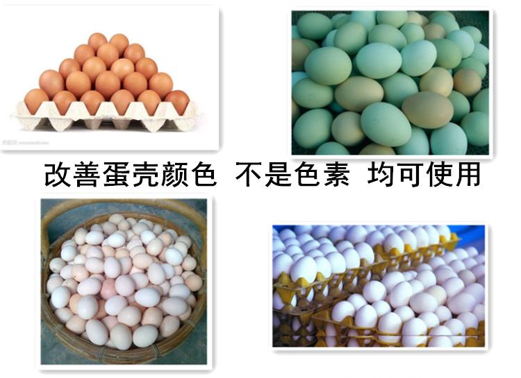 蛋鸡后期沙壳蛋怎么治提高蛋壳质量专用产品