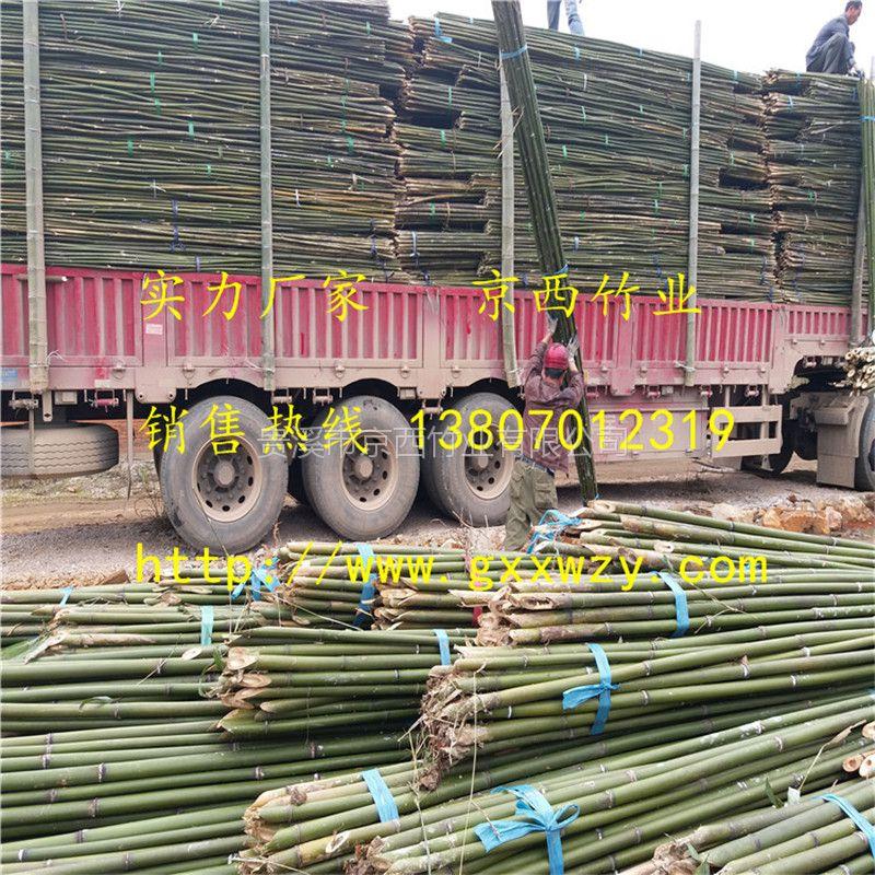 大量供应绑扶枸杞树苗用的竹杆 青海德令哈枸杞基地专用