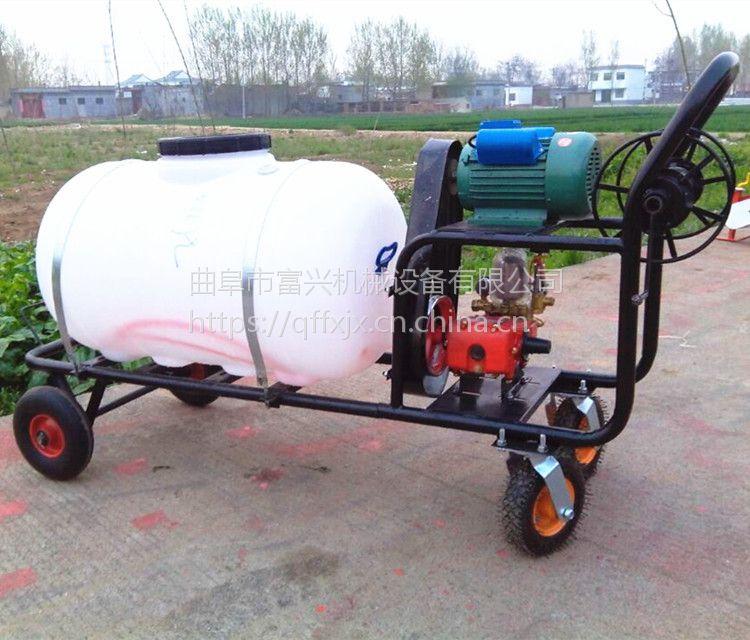 富兴果园打药机 农田汽油喷雾机 高射程打药机型号