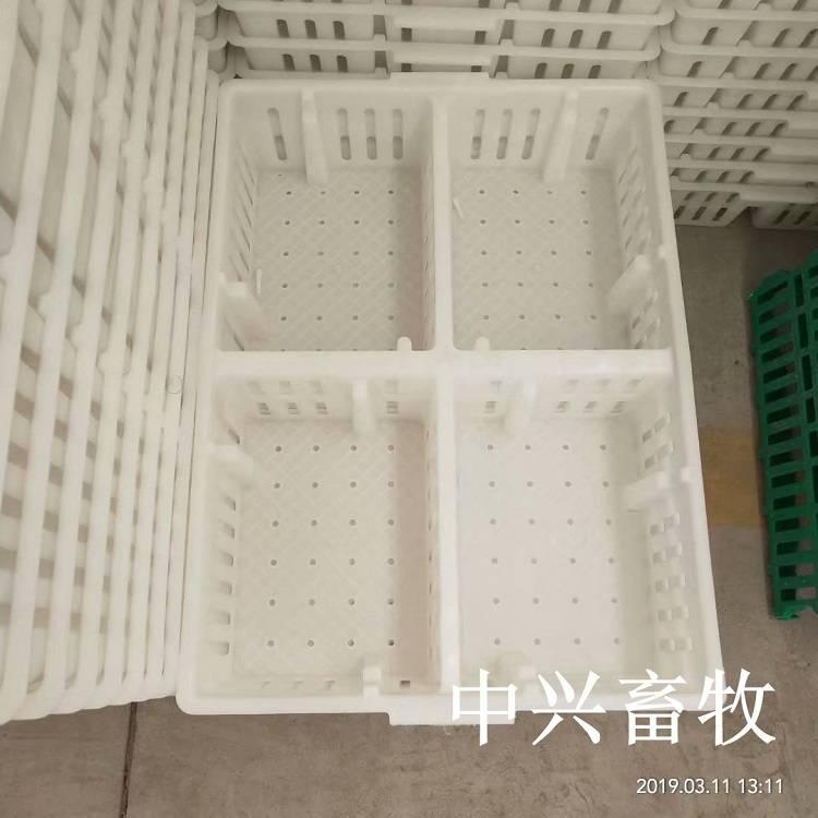鸡苗筐价格 优质塑料周转箱价格 四格加固雏鸡周转筐价格