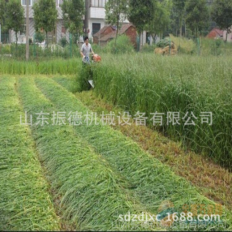 厂家热销 自走式割晒机 手扶小型割晒机 水稻收割机 牧草收割机