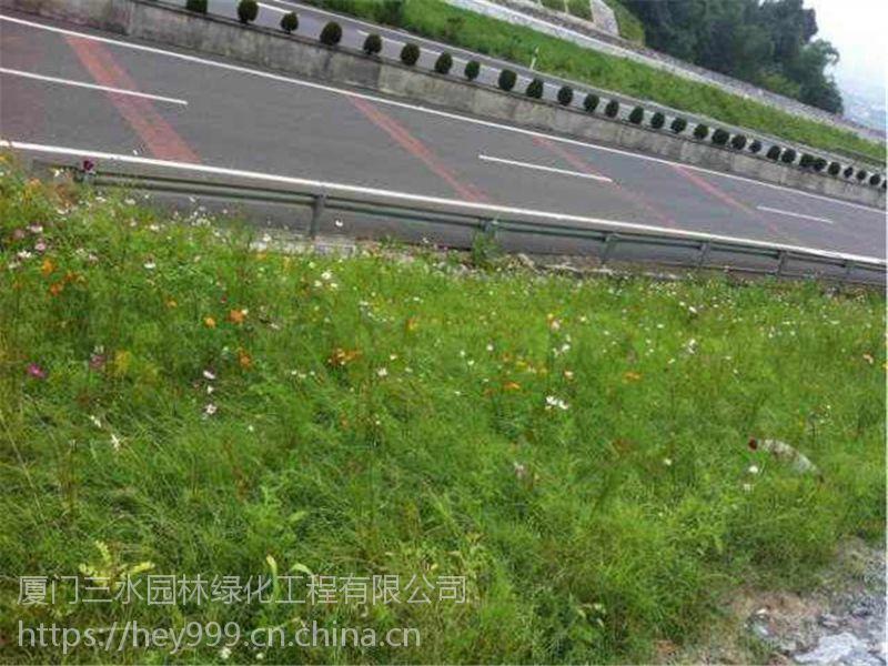 福建漳州云霄县边坡绿化护坡资材三维网无纺布