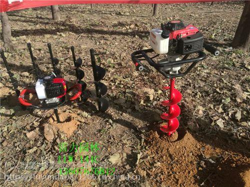 种植小树苗的小直径地面钻孔机