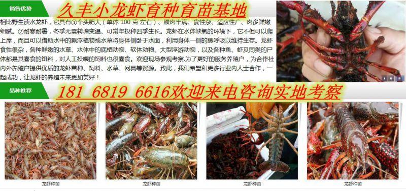http://himg.china.cn/0/4_945_237726_800_378.jpg