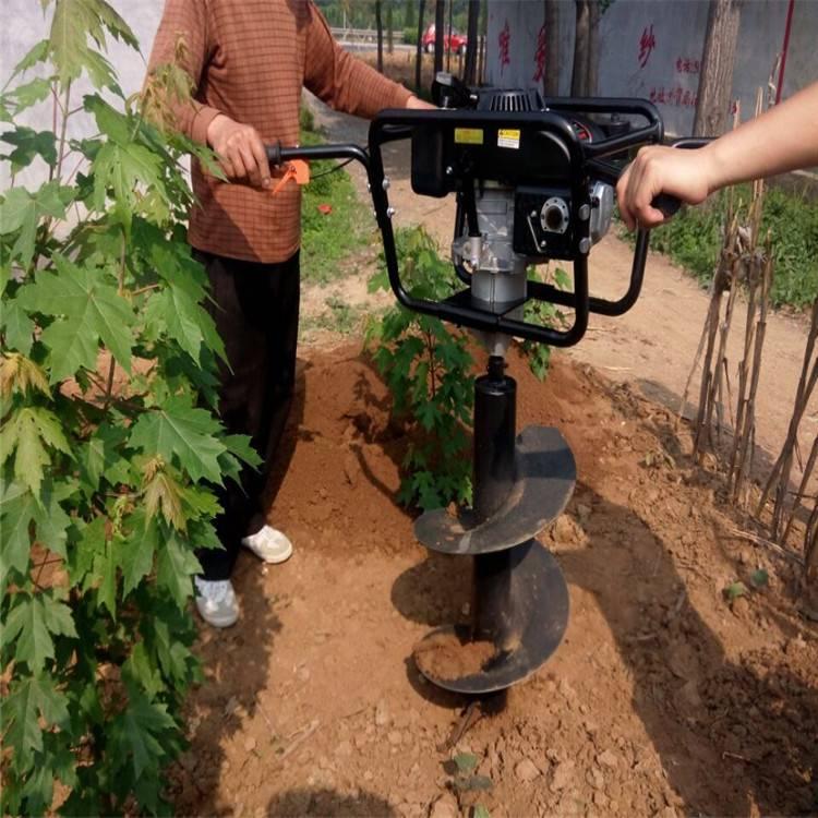新款耐用挖坑机 润众 果园移树挖树机