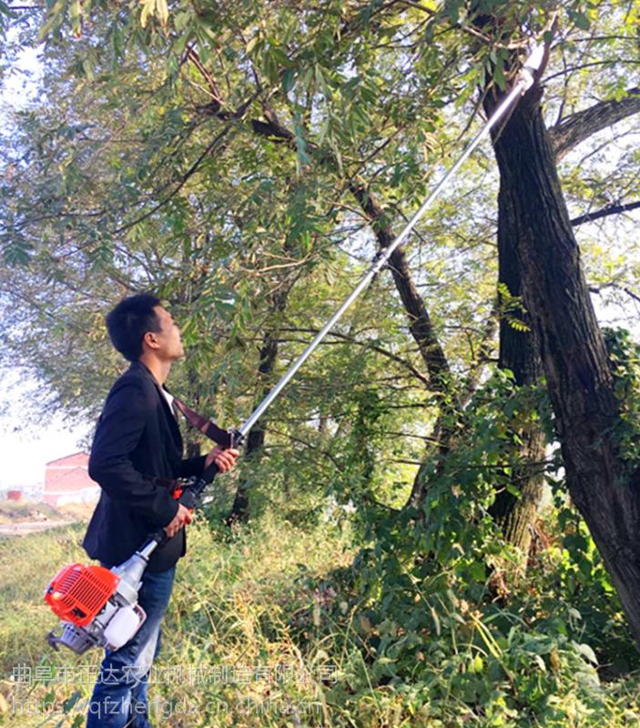 果树杂枝修剪锯 两冲高枝锯 草坪花圃高枝剪