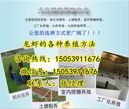 http://himg.china.cn/0/4_94_234930_539_456.jpg