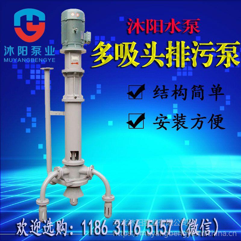 沐阳供应 PWDL CL耐酸碱排污泵 PWXL立式多吸头排污泵