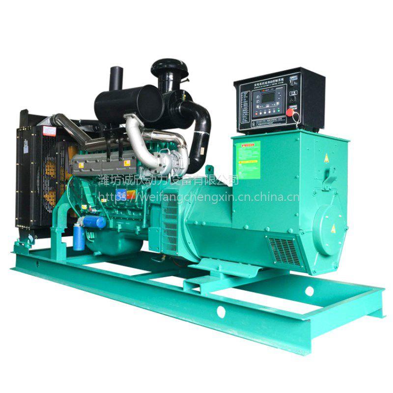 200KW诚欣动力发电机组 厂家直销 经济耐用 全铜有刷电机