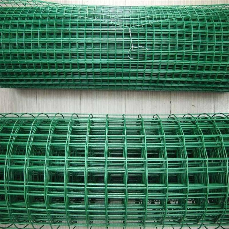 河北养鸡网报价 怎样建造养鸡围栏 荷兰网颜色