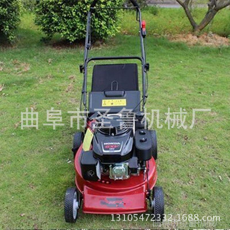 上海高尔夫球场草坪机 圣鲁四冲程手推草坪机