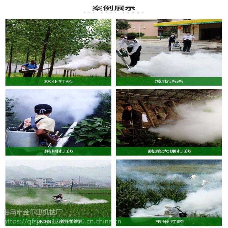 伊春射程远背负式烟雾机 便携式园林杀虫烟雾机 金尔惠超低价格水雾机
