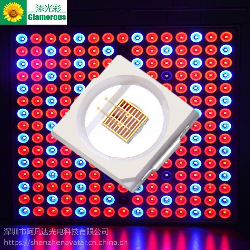 阿凡达 LED植物生长灯 光源 1W 3030 红光灯珠 660nm 植物灯专用 工厂直销