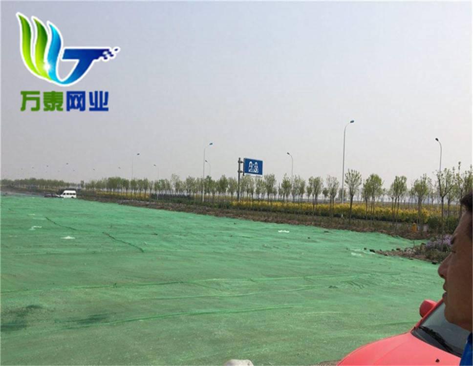 绿化遮盖网 优质盖土网 聊城专供防尘盖土网