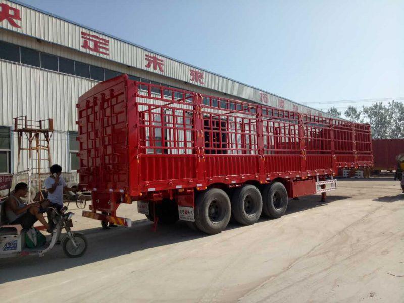http://himg.china.cn/0/4_967_1050191_800_600.jpg