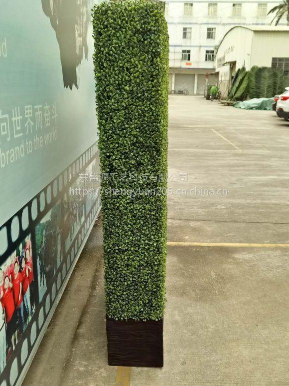 仿真米兰草隔断 商店假植物隔断 米兰草植物墙 尤加利草墙