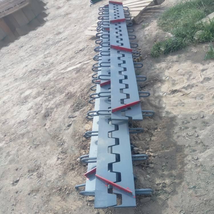 E-80型桥梁伸缩缝 长葛市 陆韵 精品成就事业