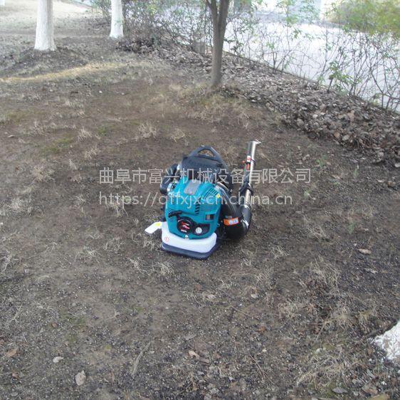 西安园林吹叶机 富兴便携式马路吹风机 背负式路面碎石灰尘落叶清理机厂家价格