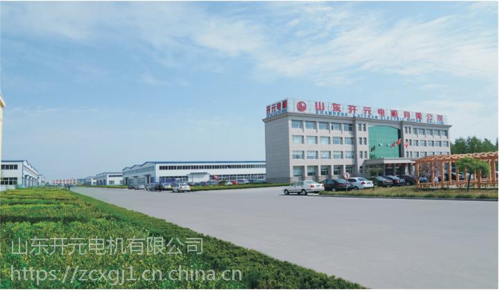 供应山东开元电机有限公司 YE2100L1-4-2.2kw 高效节能 02848
