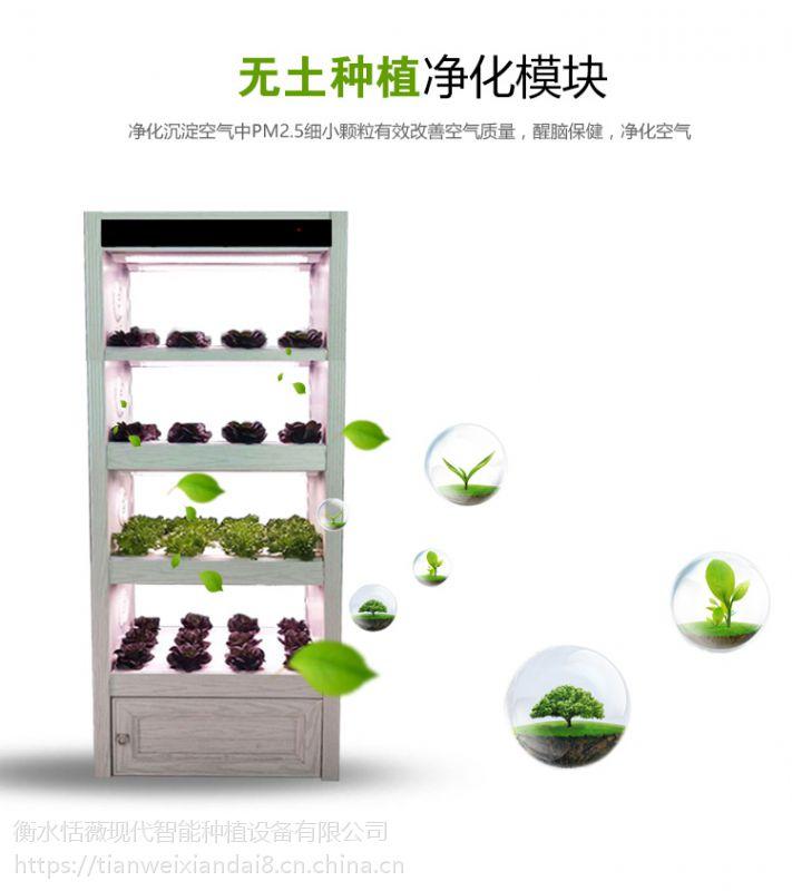 学校科研器材全智能生态菜养柜无土栽培设备智能蔬菜种植设备