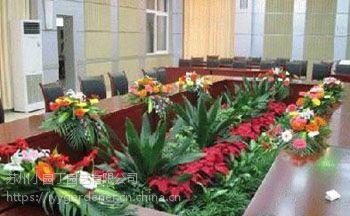 苏州绿植租赁_小园丁植物品种齐全_绿植租赁公司