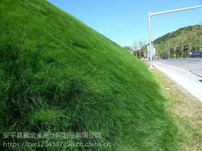 客土喷播植草用镀锌勾花网、护坡喷浆铁丝挂网河北供应