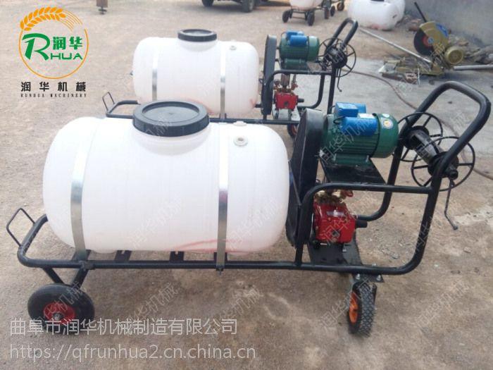 容量大的喷雾器 背负式高压汽油打药机 病害杀虫喷雾器