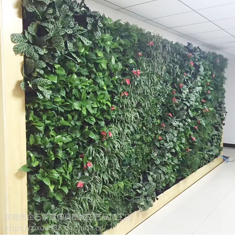 紫萱绿植|仿真植物墙|定制|装饰植物墙|易打理|可拆卸|园林景观|装修工程