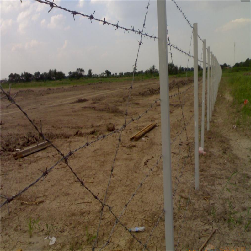 围墙用的刺绳多钱一米 西安刀片刺绳 刀片刺网施工方案
