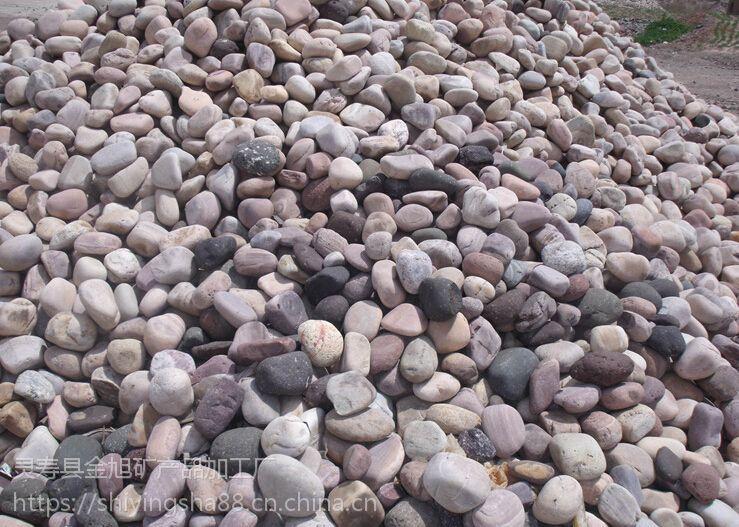 厂家直销天然鹅卵石 五彩鹅卵石 水处理用鹅卵石