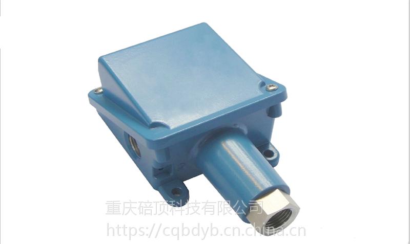 碚顶仪表B系列压力开关、压力控制器