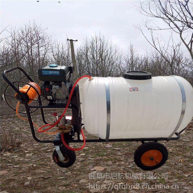 启航柑橘石榴打药机 高压远程大容量手推式喷药机 风送式喷雾器参数