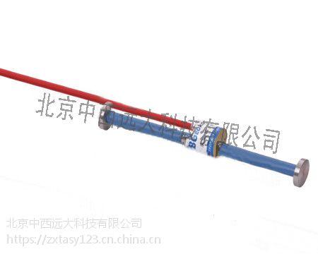 中西振弦埋入式应变计 型号:BJK20-BGK-4200库号:M160980