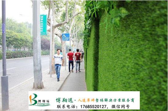 淮南工地围墙塑料草坪多少钱