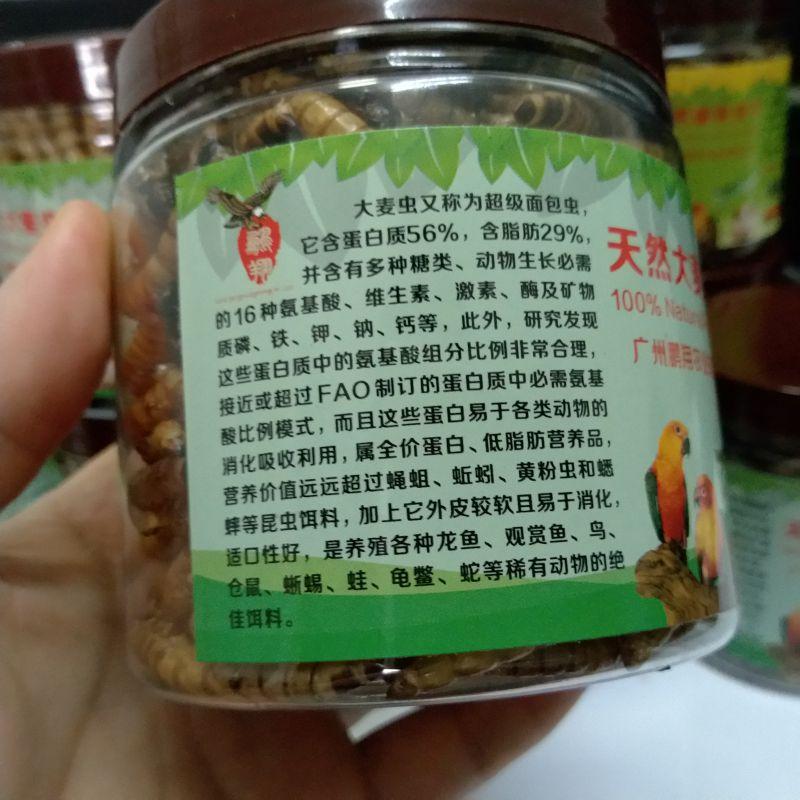 刺猬仓鼠食物比虾干鱼虫更高营养价值 大麦虫干 超级面包虫干75克/罐